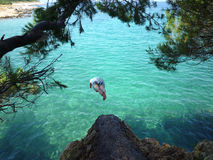 Dive from the rock. Man diving in to the clean blue Adriatic sea from the rock on island Krk in Croatia Royalty Free Stock Photos