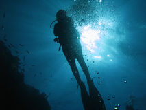 Diver 03 Stock Photo