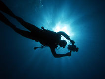 Diver 106 Stock Photography