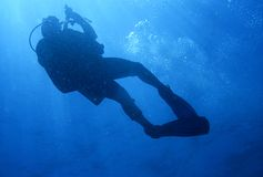 Diver. At extreme angle while on ascent Royalty Free Stock Photo