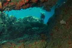 Diver behind the cave Stock Photo
