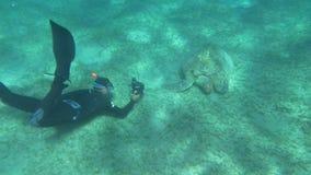 Diver and Big Sea Turtle stock video
