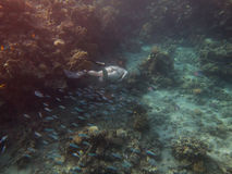 Diver in bikini Stock Images