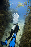 Diver with blue fins. Vertical view of scuba diver with silver tank and blue dive fins in deep blue water Royalty Free Stock Photo