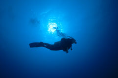 Diver in the blue, Red Sea, Sudan. Diver under the diving boat, Red Sea Stock Photography