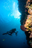 Diver blue water scuba diving bunaken indonesia sea reef ocean Royalty Free Stock Image