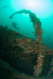 Diver, boat wreck in Ambon, Maluku, Indonesia underwater photo Stock Photos