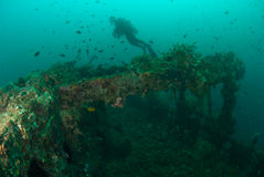 Diver, boat wreck in Ambon, Maluku, Indonesia underwater photo Royalty Free Stock Image