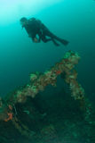 Diver, boat wreck in Ambon, Maluku, Indonesia underwater photo Stock Image