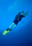 Diver with bright yellow fins Stock Image