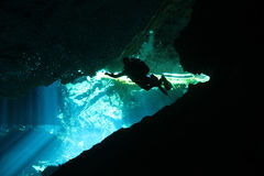 Cenote Diving. Diver in Chacmool Cenote, Playa del Carmen, Mexico Royalty Free Stock Images