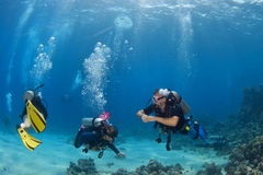 Diver couple on the reef. Diver couple exploring the reef Stock Photography
