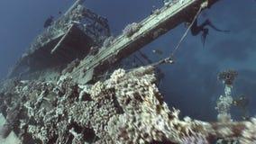 Diver on deck of ship wreck Salem Express. stock footage