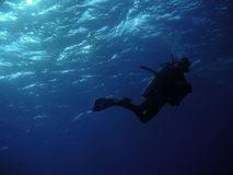 Diver in the deep blue. Scuba Diving Royalty Free Stock Images