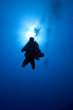 Diver descent in blue Royalty Free Stock Photos