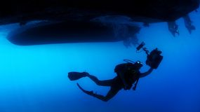Diver, Diving, Swimming, Sea, Ocean Royalty Free Stock Photography