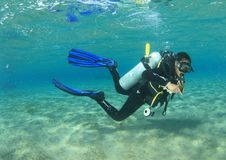 Diver - girl underwater. Diver dressed up into wetsuit and BCD with bottle and blue fins scuba diving in sea in shallow water above sand in Red Sea in Marsa Alam royalty free stock photos