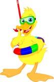 Diver duck thumb up cartoon. Vector illustration of diver duck thumb up cartoon stock illustration