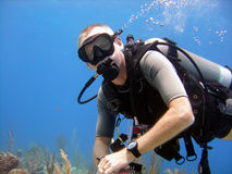 Diver enjoys a sunny dive. A male diver enjoys a shallow sunny dive in the Caribbean Royalty Free Stock Images