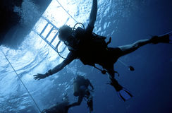 Diver Freefall stock photography