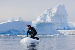 Diver on the ice. A diver on the ice against the blue iceberg. Antarctica Stock Photography