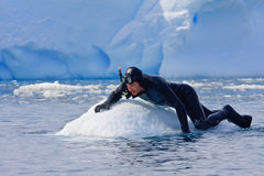 Diver on the ice Royalty Free Stock Photo