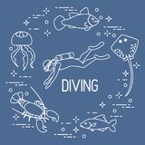 Diver, jellyfish, lobster, stingray, fish. Sports and recreation theme Royalty Free Stock Photo