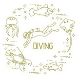 Diver, jellyfish, lobster, stingray, fish. Sports and recreation theme Stock Photos