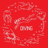 Diver, jellyfish, lobster, stingray, fish. Sports and recreation theme Royalty Free Stock Image