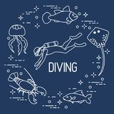 Diver, jellyfish, lobster, stingray, fish. Sports and recreation theme Stock Images