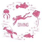 Diver, jellyfish, lobster, stingray, fish. Sports and recreation theme Royalty Free Stock Photos
