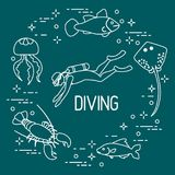 Diver, jellyfish, lobster, stingray, fish. Sports and recreation theme Royalty Free Stock Images