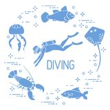 Diver, jellyfish, lobster, stingray, fish. Sports and recreation theme Royalty Free Stock Photography