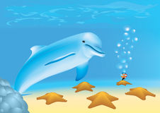Diver is looking at a dolphin and sea-stars. Newbie diver is looking at a dolphin and sea-stars underwater Royalty Free Stock Image