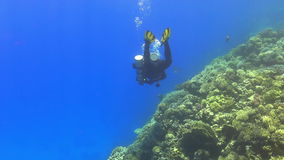 Diver make to dive stock video footage