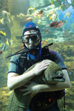 Diver and Moray Royalty Free Stock Photos