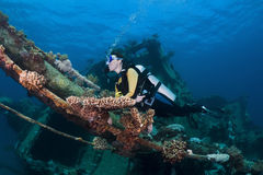 Diver over a shipwreck Stock Images