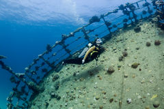 Diver over a wreck Stock Photo