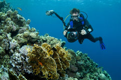 Diver photographing coral reef. Underwater view of Scuba diver photographing coral reef in blue sea Royalty Free Stock Images