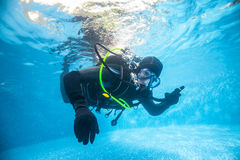 Diver in pool Royalty Free Stock Photos