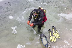 Diver preparing for the ice-diving under the frozen surface of l Royalty Free Stock Photography