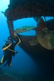 Diver with Propeller of wreck Hilma Bonaire. Diver exploring the propeller of the wreck Hilma Bonaire Royalty Free Stock Images