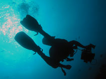 Diver in red sea. Silhouette of underwater diver with recorder Royalty Free Stock Images