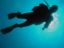 Diver in red sea. Silhouette of underwater diver in red sea Royalty Free Stock Photos