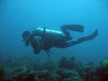 Diver in sabang bay. Scuba diver over a small coralreef Royalty Free Stock Photography