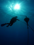 Diver at a safety stop Stock Images