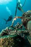Diver scuba diving lembeh strait indonesia Stock Photo