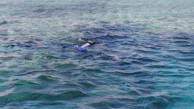 Diver with scuba and flippers swimming underwater. In clear blue water of the Red Sea stock video