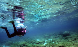 Diver in Shallow water stock image