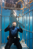 Diver in shark cage Royalty Free Stock Images